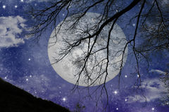 волшебный взгляд ночи иллюстрация вектора