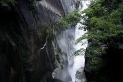 Волшебный водопад в Японии стоковые изображения rf