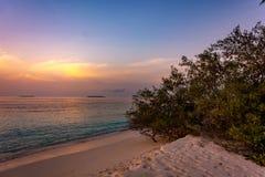 Волшебный заход солнца в острове Мальдивов стоковое фото rf