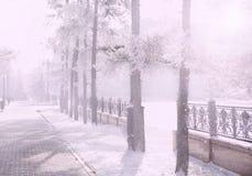 Волшебный парк города зимы накаляя солнечным светом Ландшафт городка Snowy Красивые деревья в влиянии солнца backlighting замороз Стоковая Фотография RF