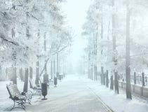 Волшебный парк города зимы накаляя солнечным светом Ландшафт городка Snowy Красивые деревья в влиянии солнца backlighting замороз Стоковые Изображения
