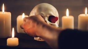 Волшебный ритуал с черепом и сердцами акции видеоматериалы