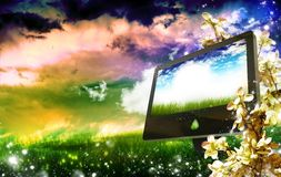 Волшебный WWW Стоковое Изображение RF