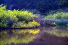 волшебство озера Стоковое фото RF