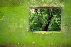 вольность к окну Стоковое Фото