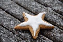 Воодушевленность зимы Стоковое фото RF