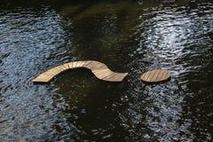 Вопросительный знак в реке Стоковая Фотография