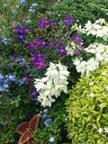 Воплощения сада Стоковые Фото