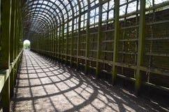 дворец hampton суда Стоковое Фото