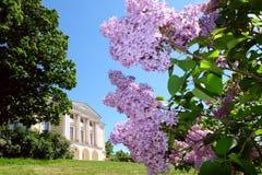 дворец pavlovsk Россия Стоковое Фото
