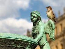 Воробей ангела бронзовой скульптуры Стоковое фото RF