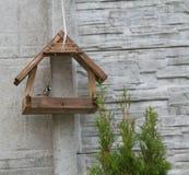 Воробей в фидере птицы Стоковые Фотографии RF