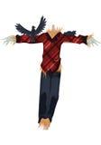 Ворона устрашения Стоковое Изображение RF