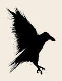 Ворона иллюстрация штока