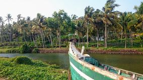 Ворон на смычке шлюпки, водяных каналов в джунглях Керале, Индии стоковые изображения