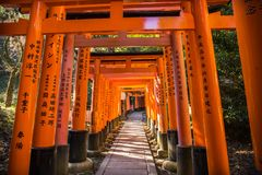 Ворота Torii стоковая фотография