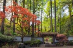 Ворот к весне сада Портленда японской стоковые изображения rf