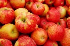 ворох яблок стоковое изображение rf