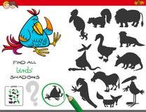 Воспитательная игра теней с птицами Стоковое Фото