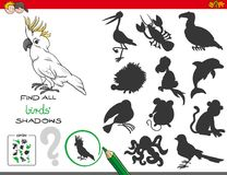 Воспитательная игра теней с характерами птиц Стоковое Изображение