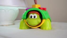 Воспитательная игрушка, poping черепахи главный вверх когда кнопка будет отжата видеоматериал