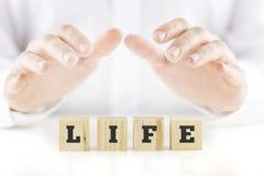 Воспитывающ руки человека приданного форму чашки над жизнью слова Стоковые Фото
