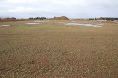 Восстановленный аграрный край Стоковые Фотографии RF