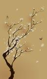 Востоковедная картина стиля, цветение сливы весной Стоковые Фотографии RF