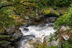 Восточное река Lyn Стоковые Изображения