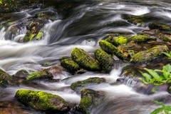 Восточное река Lyn Стоковые Изображения RF