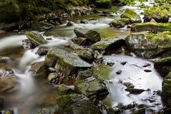 Восточное река Lyn, Watersmeet, северный Девон, Великобритания Стоковое Изображение