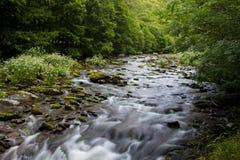 Восточное река Lyn, Watersmeet, северный Девон, Великобритания Стоковое фото RF