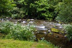 Восточное река Lyn, Watersmeet, северный Девон, Великобритания Стоковые Изображения RF