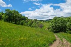 Восточно-европейский пейзаж - область Трансильвании Стоковые Фото
