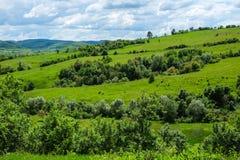 Восточно-европейский пейзаж - область Трансильвании Стоковая Фотография