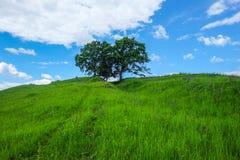 Восточно-европейский пейзаж - область Трансильвании Стоковые Изображения RF