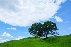 Восточно-европейский пейзаж - область Трансильвании Стоковое Фото