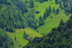 восточно - европейское лето пейзажа горы Стоковая Фотография
