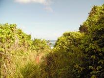 Восточные Барбадос Стоковые Фото