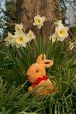 Восточные зайцы - вертикаль стоковое изображение