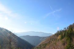 Восточные Карпаты, ресервирование Piatra Craiului естественное, Румыния Стоковая Фотография
