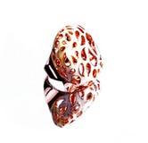 Восточные турецкие кольца золота handmade на белой предпосылке Стоковые Изображения