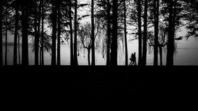 Восточные любовники озера Стоковое фото RF