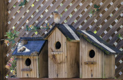 Восточные birdhouses беседки сада коробки гнезда птицы синей птицы Стоковое Изображение RF