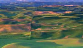 восточный вашингтон полей фермы стоковые изображения rf