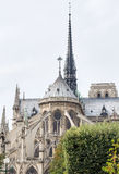 Восточный фасад католического собора Нотр-Дам de Парижа стоковое фото