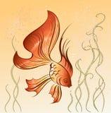 восточный goldfish иллюстрация вектора