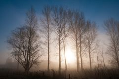 Восходящее солнце на утре зимы стоковое изображение rf