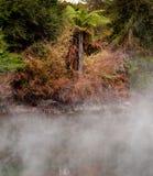 восходящий поток теплого воздуха бассеина sulfurous Стоковые Изображения RF