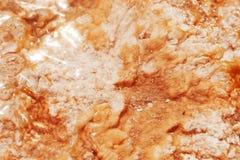 восходящий поток теплого воздуха коралла Стоковые Фото